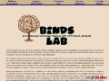 BINDS Lab: Biologically Inspired Neural and Dynamical Systems