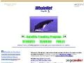 WhaleNet