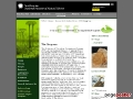 Evolution of Terrestrial Ecosystems Program (ETE)
