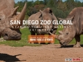 San Diego Zoos Conservation and Research for Endangered Species